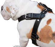 "Genuine Black Leather Dog Pulling Walking Harness XLarge 33""-37"" Chest 1.5"" Wide Straps, Padded"