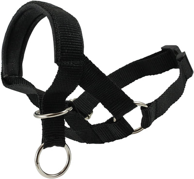 Dog Head Collar Halter Black 6 Sizes