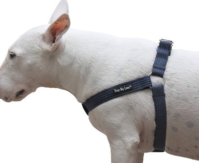 Cotton Web Adjustable Dog Step-in Harness 4 Sizes Blue
