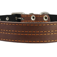 "Genuine Leather Dog Collar, Padded, Brown 1.5"" Wide. Fits 22.5""-26.5"" neck size Great Dane Mastiff"