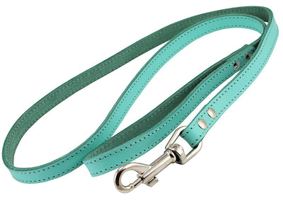 Dogs My Love Genuine Leather Dog Leash 4-Feet Wide Cyan