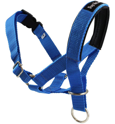 Dog Head Collar Halter Blue 5 Sizes