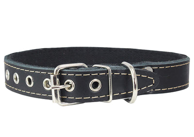 Genuine Leather Dog Collar, Cotton Padded, 1