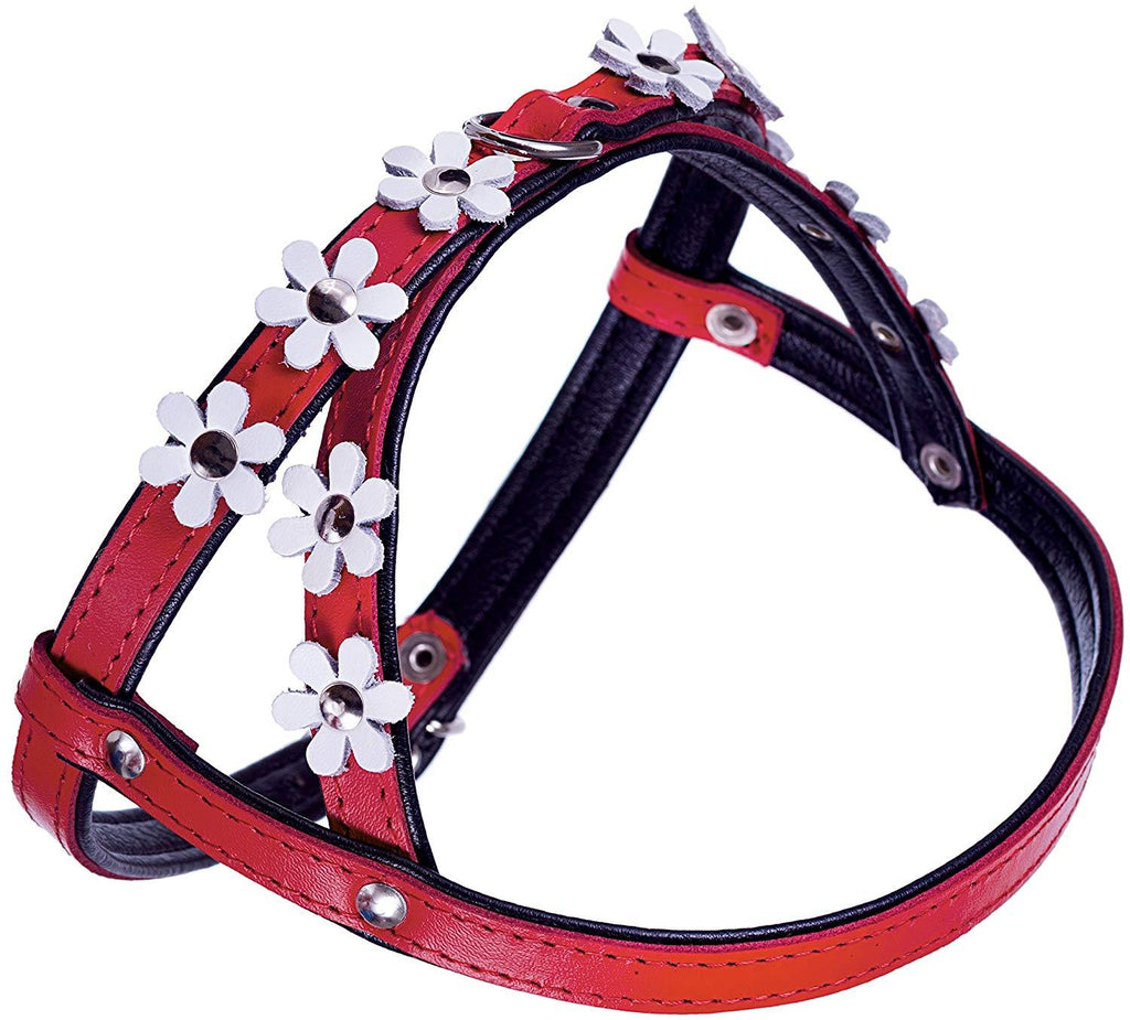 Genuine Leather Dog Harness Daisies for Toy and Small Breeds Padded Red/Black