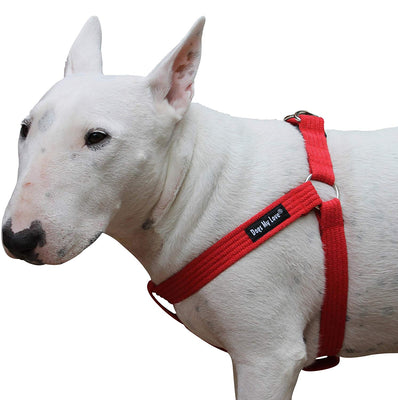 Cotton Web Adjustable Dog Step-in Harness 4 Sizes Red