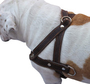 "Genuine Brown Leather Dog Pulling Walking Harness Medium to Large. 25.5""-31"" Chest, 1.5"" Straps"