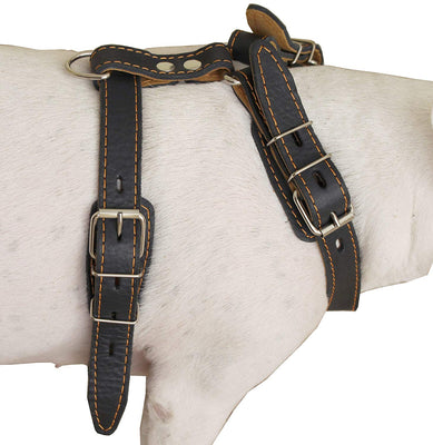 Genuine Leather Dog Harness, 25