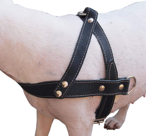 "Genuine Black Leather Dog Pulling Walking Harness Medium to Large. 25.5""-31"" Chest, 1.5"" Straps"