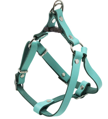 Genuine Leather Adjustable Step-in Dog Harness 2 Sizes Small XSmall [Turquoise]