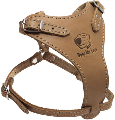 Genuine Leather Dog Harness 14