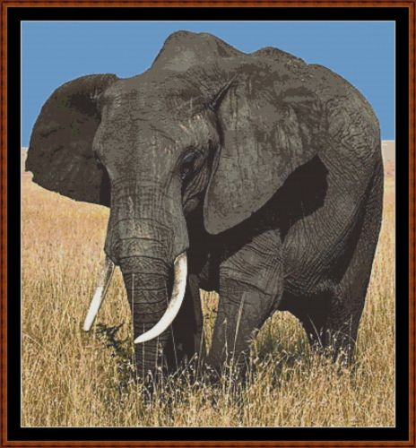 AFRICAN ELEPHANT - Cross Stitch Pattern *PDF File*