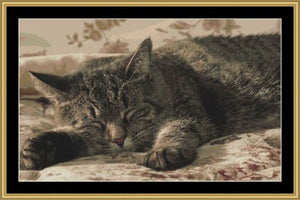 ASLEEP !  Cross Stitch Pattern *PDF File*