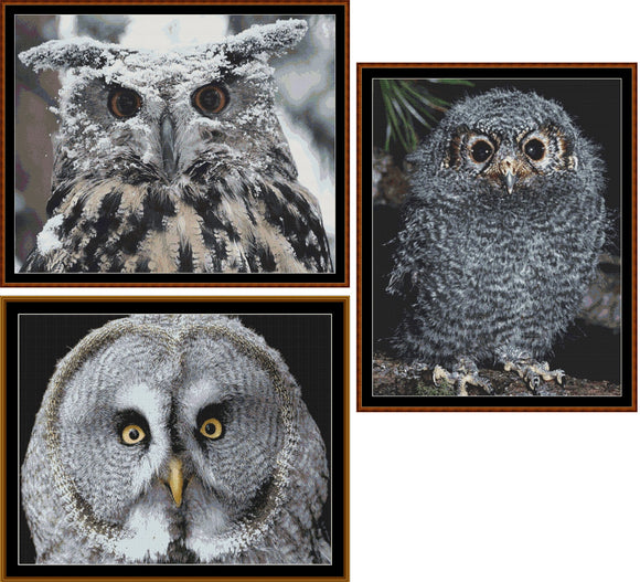 WISE OWLS Cross Stitch pack - 3 patterns *PDF File*