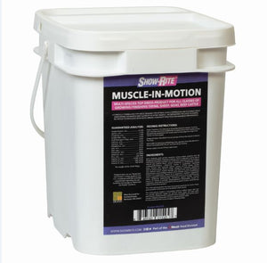 Muscle-In-Motion