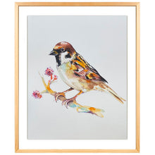 Load image into Gallery viewer, PASSER DOMESTICUS - GORRIÓN