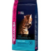 Eukanuba Cat Adult Top Condition 7+