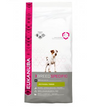 Eukanuba Breed Nutrition Jack Russell
