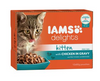 IAMS Delights Cat Wet Kitten Gravy 12x85g