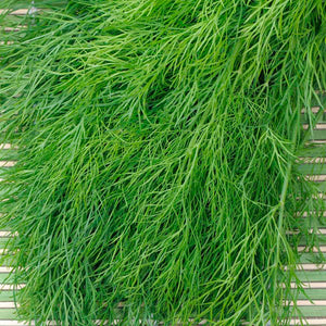 Dill, Bouquet 1 OZ.