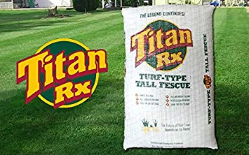 Titan Rx -Turf Type Tall Fescue