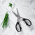 8 Inch Take-Apart Kitchen Scissors_Black