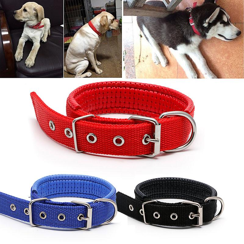 Dogs - 1Pc Adjustable Safety Dog Collars 3Colors Sponge Foam Doggie Pet Neck Strap Nylon Collar 3 Size -   jetcube