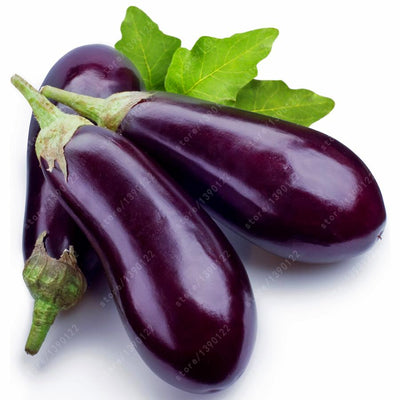 - 100 pcs/bag purple eggplant seeds,bonsai Organic seeds vegetables,Balcony or courtyard potted plant Edible food seeds for garden -   jetcube