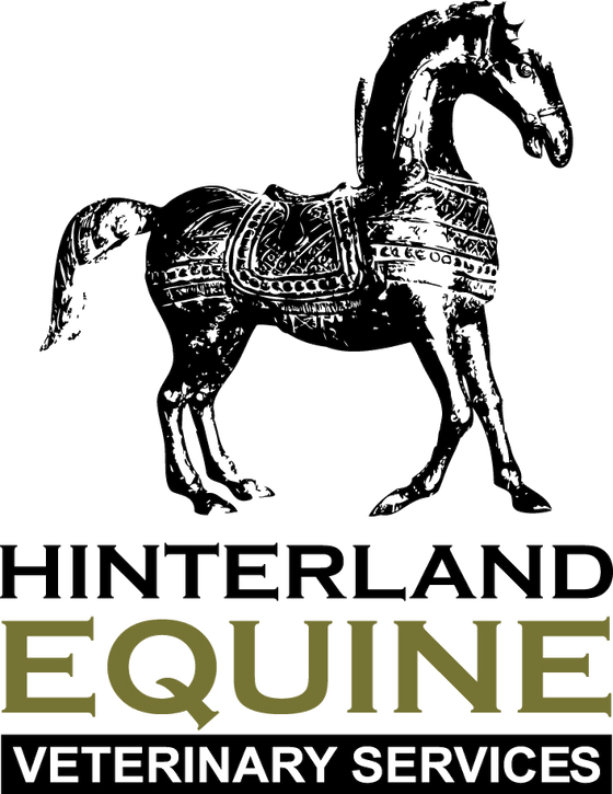 Hinterland Equine Veterinary Services