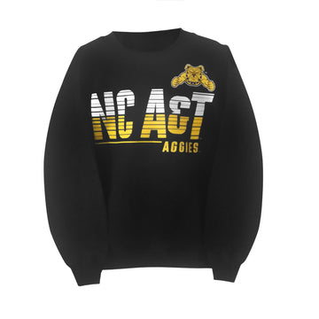"NC A&T Aggies ""Streak"" Youth Sweatshirt - HBCUprideandjoy"