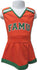 That Ole FAMU Spirit Cheer Dress