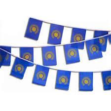 19ft Commonwealth Flag Bunting