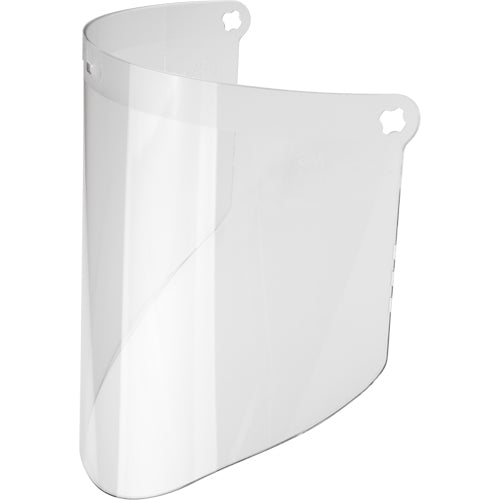 Replacement WP96 Faceshield (Case of 10)