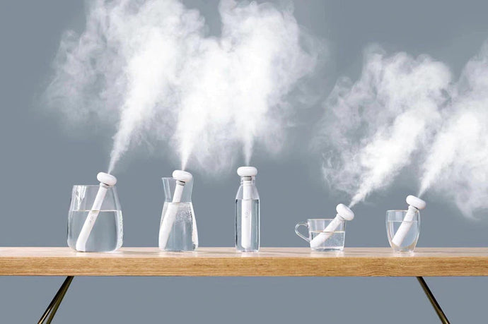 Why Portable Humidifier is Worth it?