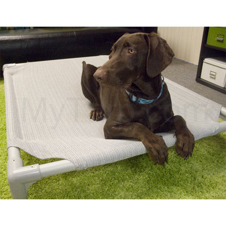 Coolaroo Outdoor Dog Bed Small - Aluminum Frame with Birch Cover (27.5