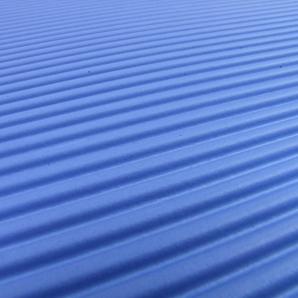 Close Up Of 66fit Professional Exercise Mat - 17mm x 60cm x 180cm - Blue/Black 3