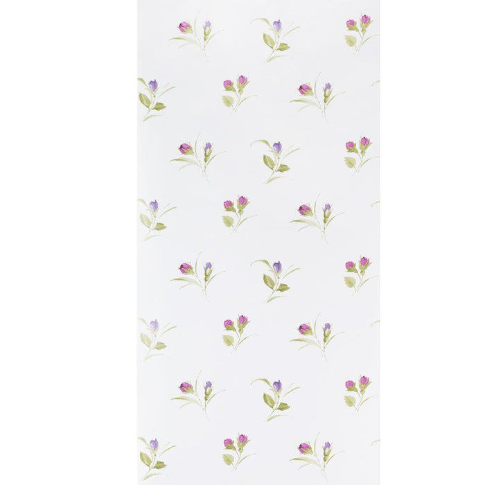 Fresco Wallpaper Darling Buds Plum / Pink