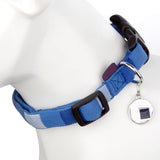Supplies - Dog Puppy Collar & Tag Blue Square- M 34-48cm