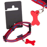 Pet Dog Puppy Collar & Tag Red/Blue - M 33-48cm