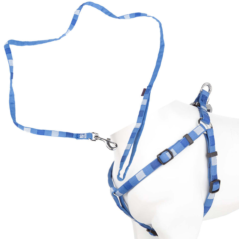 Adjustable Pet Dog Puppy Lead & Harness Set - Blue/Multi - Small