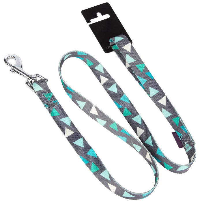 Pet Dog Lead & Clip Green/Grey - 1m - 1cm - XS