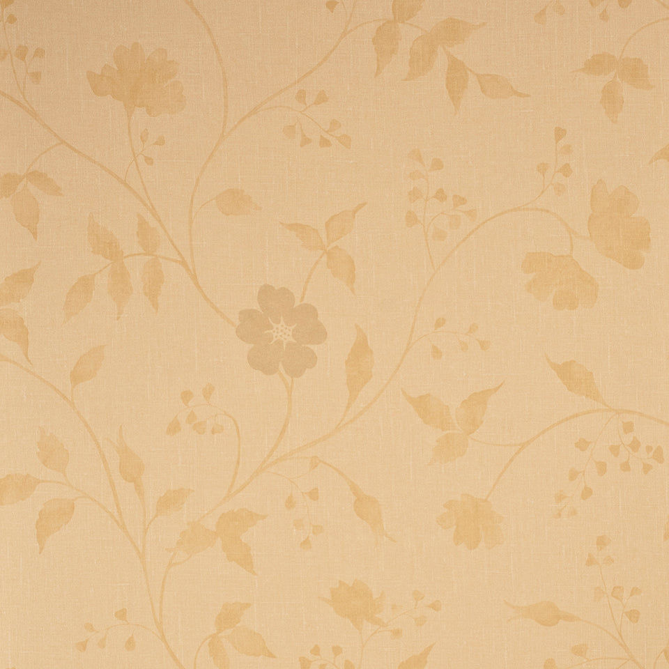 Wallpaper - Harlequin Wallpaper Arboreta Wallpaper - 75081