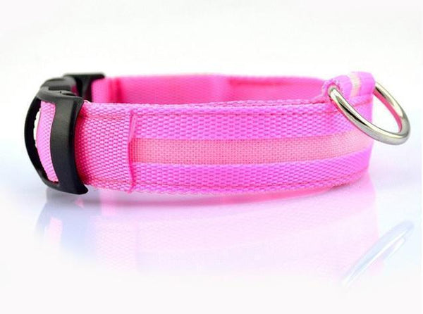 Free led dog collar - mobile