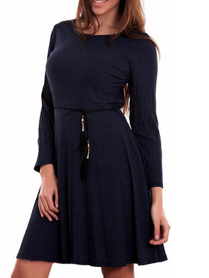 Solid Crew Neck Long Sleeve A-line Mini Dress