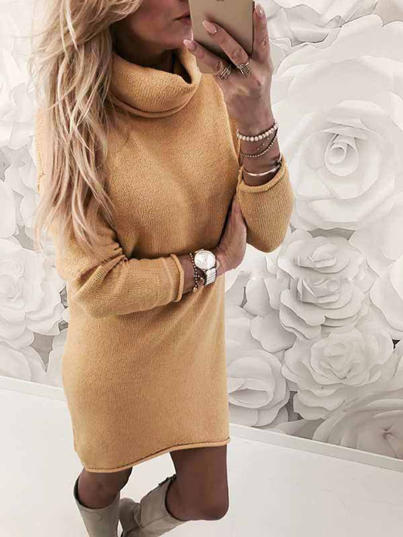 Turtle Neck Solid Fit Knit Dress