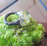 Terrarium Resin Ring | Size 7 US | 014