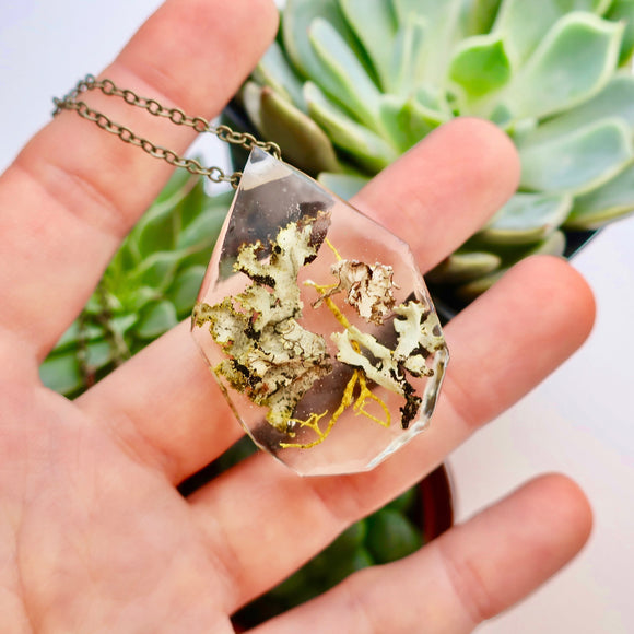 Lichen and Moss Terrarium Eco Resin Moss Necklace | 003