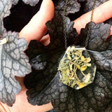 Preserved Lichen Terrarium Resin Necklace