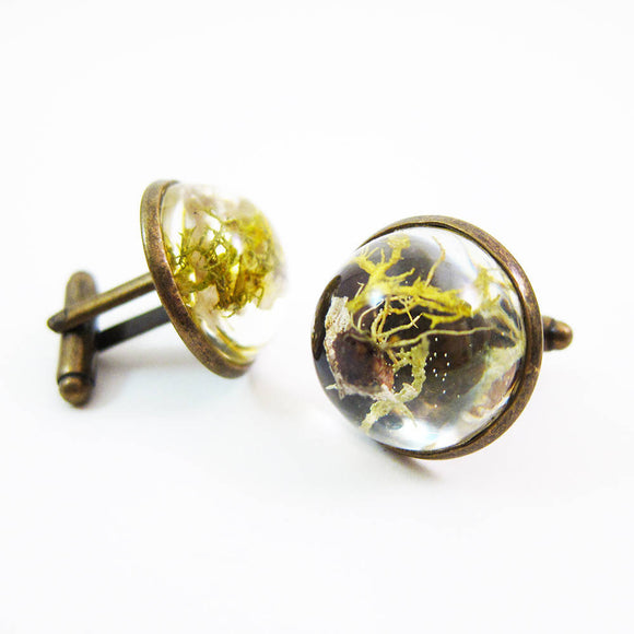 Dome Terrarium Cufflinks