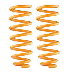 Challenger PA 1998-2006 (Coil) Rear Performance Coil Springs