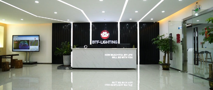 BTF-LIGHTING Official Video